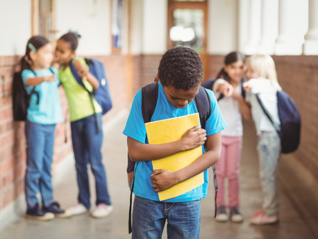 WHAT ARE A PARENT'S RIGHTS IN A HIB (HARASSMENT, INTIMIDATION, and BULLYING) INVESTIGATION?