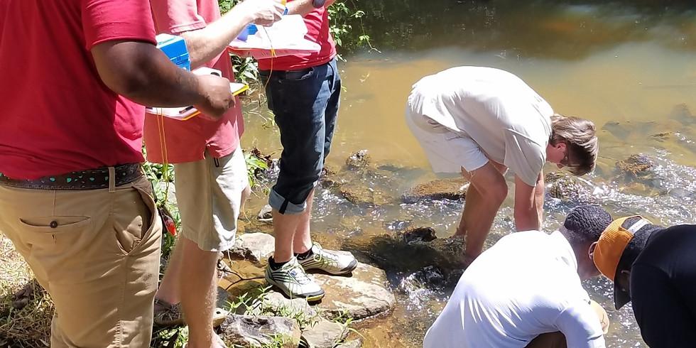 Meet the Creek