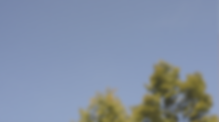 Bildschirmfoto 2019-11-04 um 20.36.38.pn