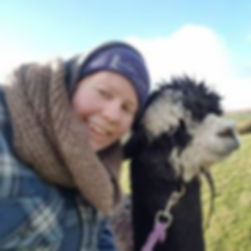 Alpacas Cornwall Emma Collison