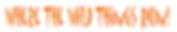 Run Logo.png