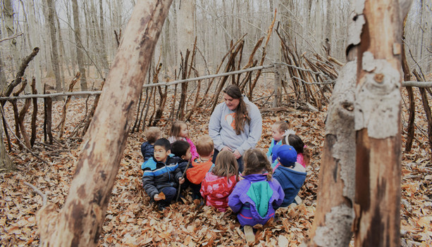 Our forest fort