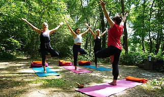 Yoga in forest.jpg