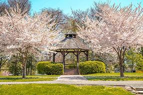 Ballard Park Gazebo by Michele Williams.