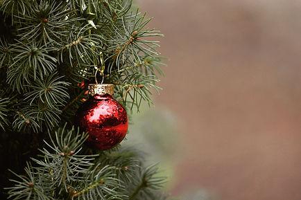 christmas-4704707_1920.jpg