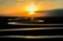 prairie-679014_1920.jpg