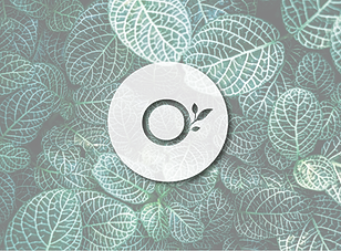 VerdeSagrado-01-1.png