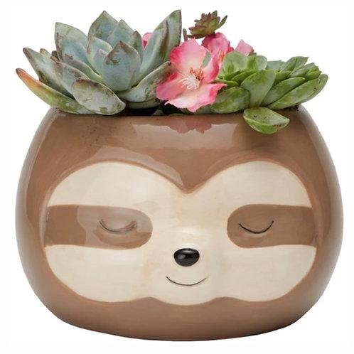 Zen Sloth Planter Box