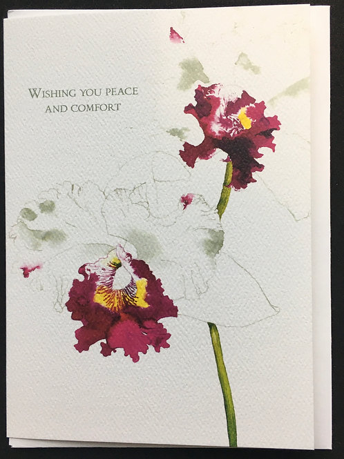 Orchid Sympathy Card - Wishing You Peace and Comfort