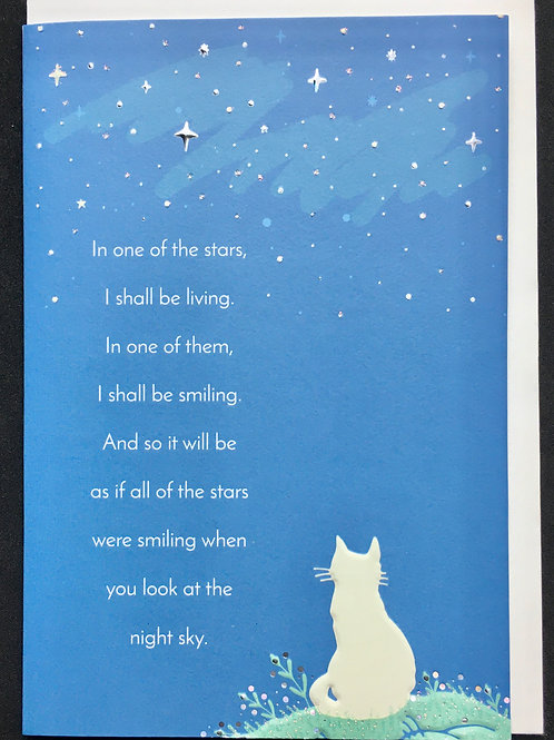 Cat Sympathy Card - In one of the stars ...