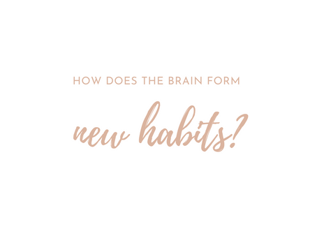 How Does The Brain Form New Habits?