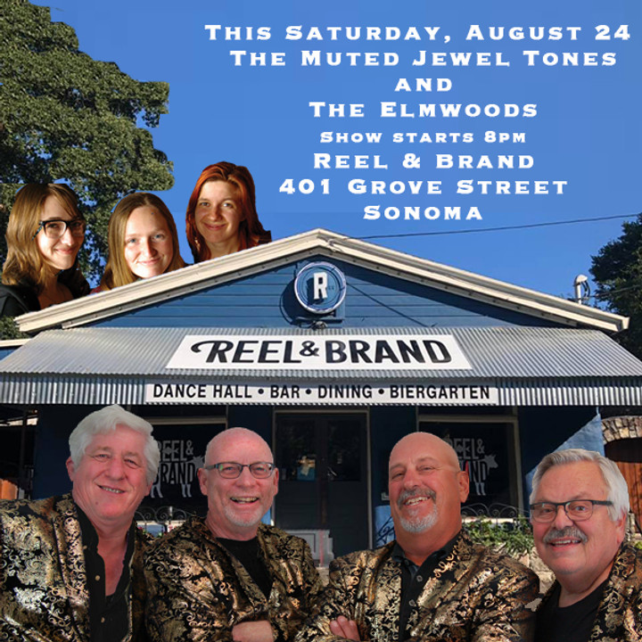 TMJT and The Elmwoods