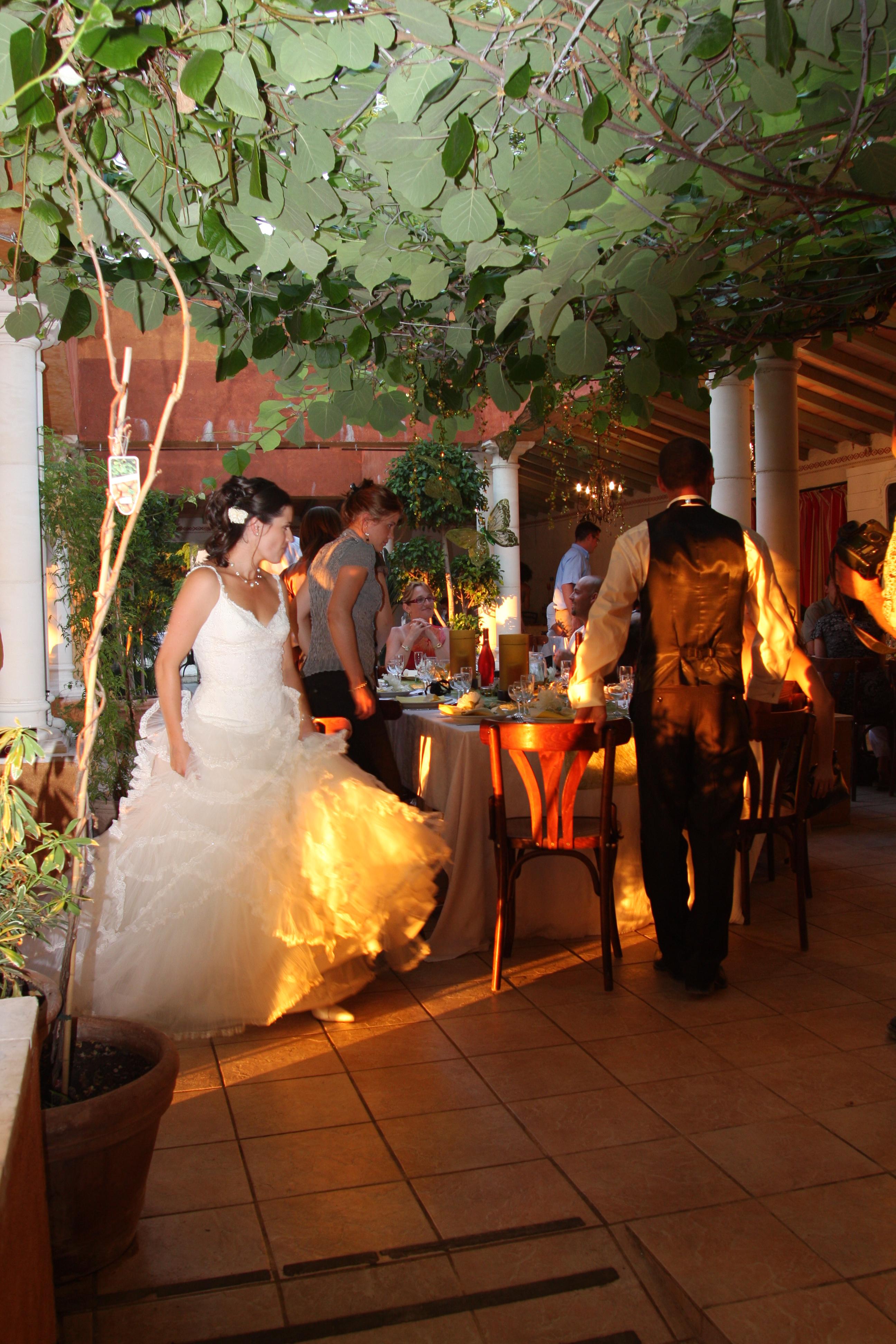 Mariage dans le Gard, réception