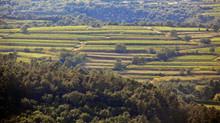 10 bonnes raisons de partir en vacances dans le Gard