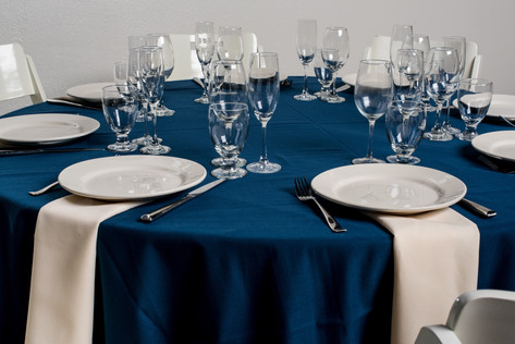 Navy Table + Ivory Napkins