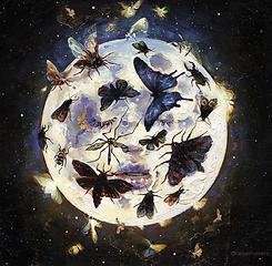 Moon and butterflies _tanyashatseva.PNG