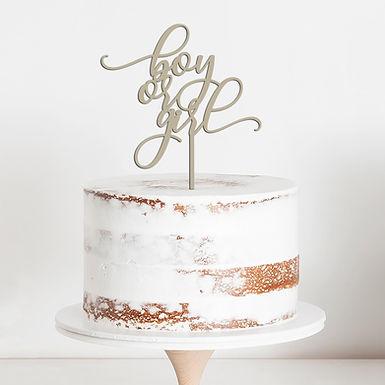 CakeTopper - Tortenstecker Boy or Girl - Gender - Birth - Geburt