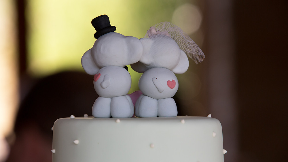 We were so happy to be Jen & JOhns wedding videographers.