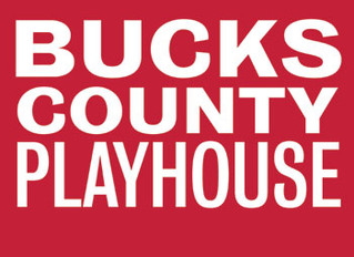Laura Osnes, James Snyder, Michel Bell Will Star in Bucks County Playhouse Show Boat