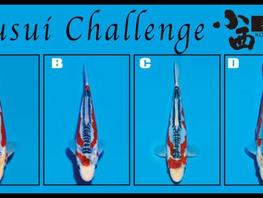 Shusui Challenge