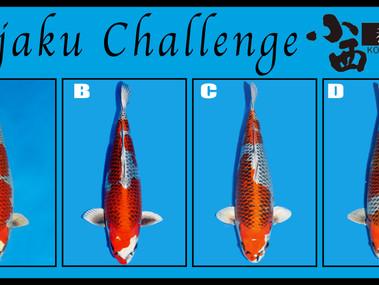 Kujaku Challenge