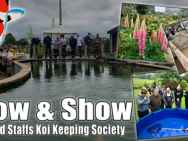 Mid Staffs Grow & Show Event Day.