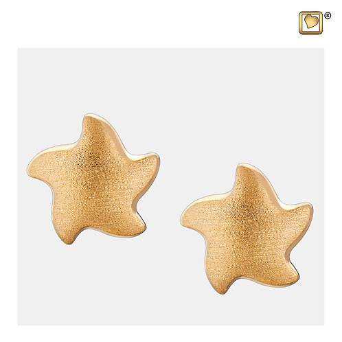 Angelic Star Stud Earrings Brushed Gold Vermeil