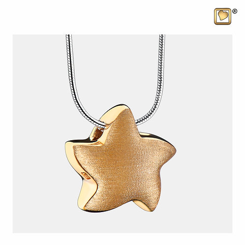 Angelic Star Ashes Pendant Brushed Gold Vermeil