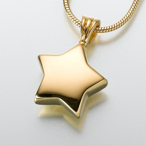 Small Gold Vermeil Star