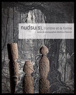 Publication : nudsu(s), l'ombre et la forme - auteur Matthieu Péronnet