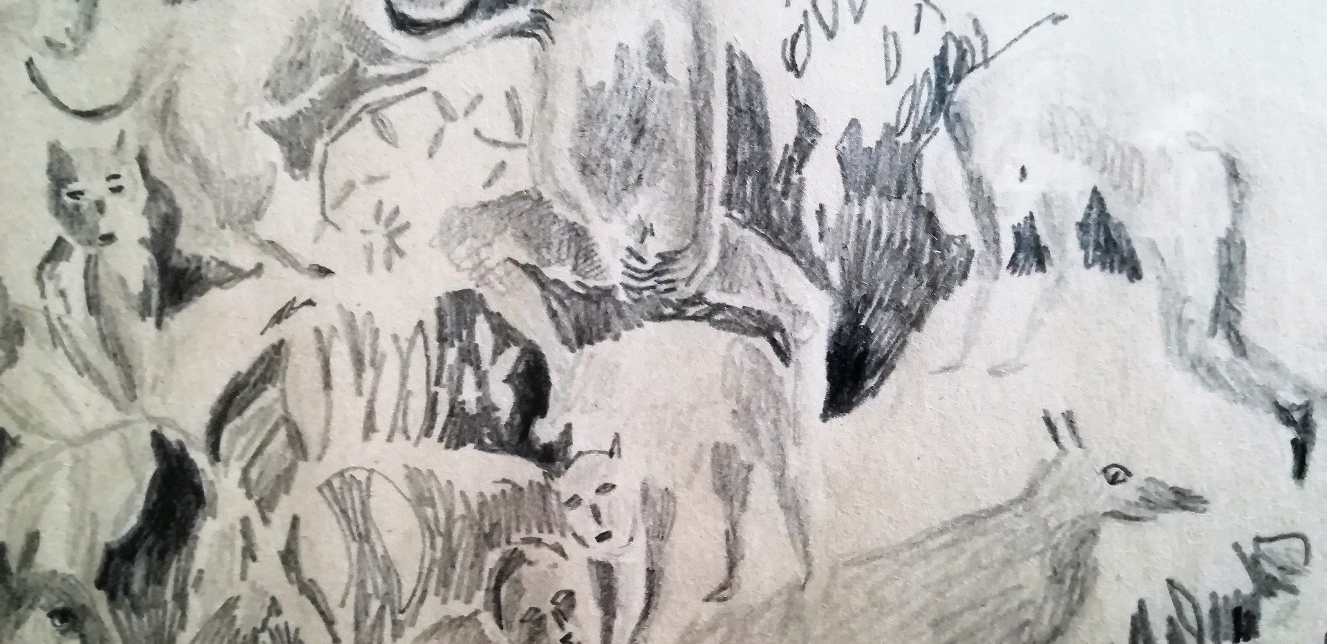 La Vénus nue | détail Mine graphite sur papier 23 x 30,5 cm