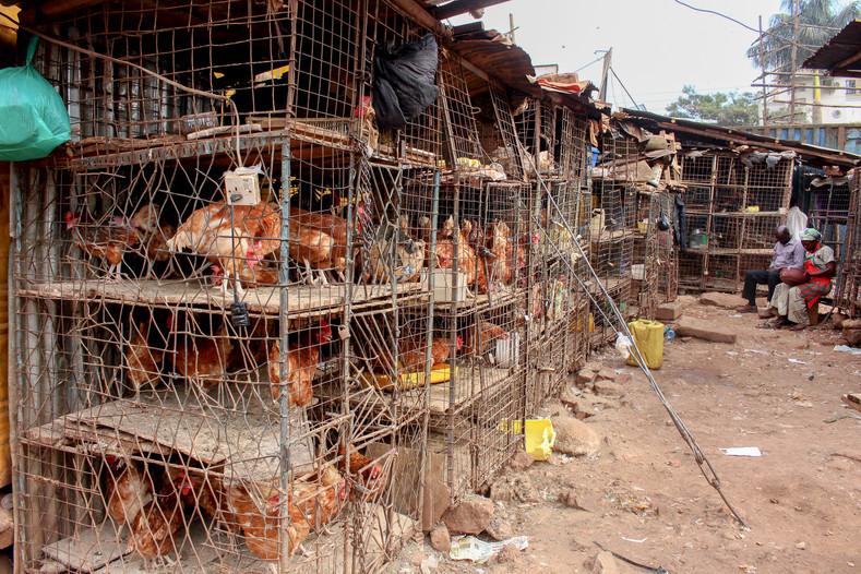 chickenmarket.jpg