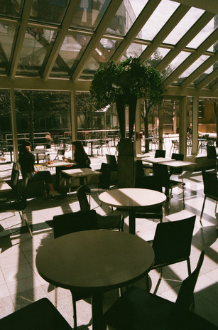 Finch Food Court