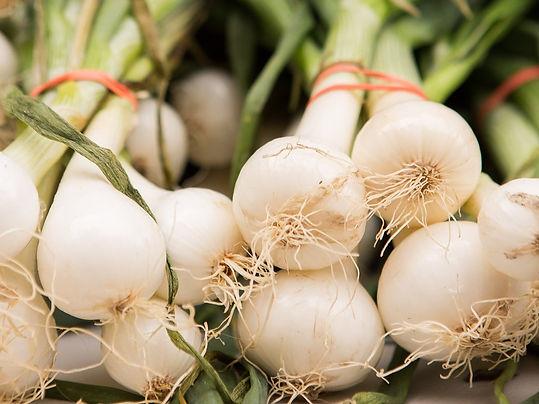 onions_edited.jpg