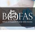 BOFAS Scientific Committee - Mr Dev Mahadevan