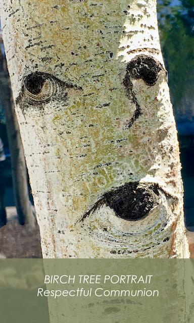 BIRCH TREE PORTRAIT Respectful Communication