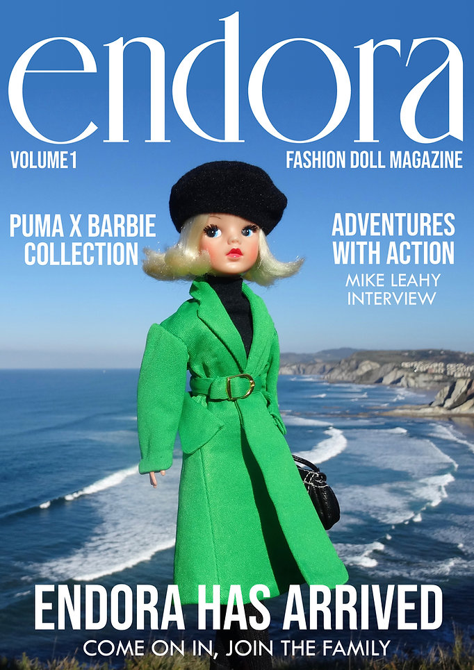 ENDORA Cover.jpg