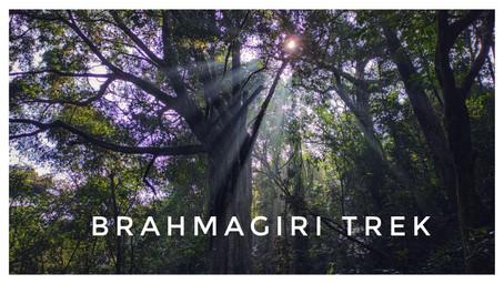 Brahmagiri Trek (Last of 2020)