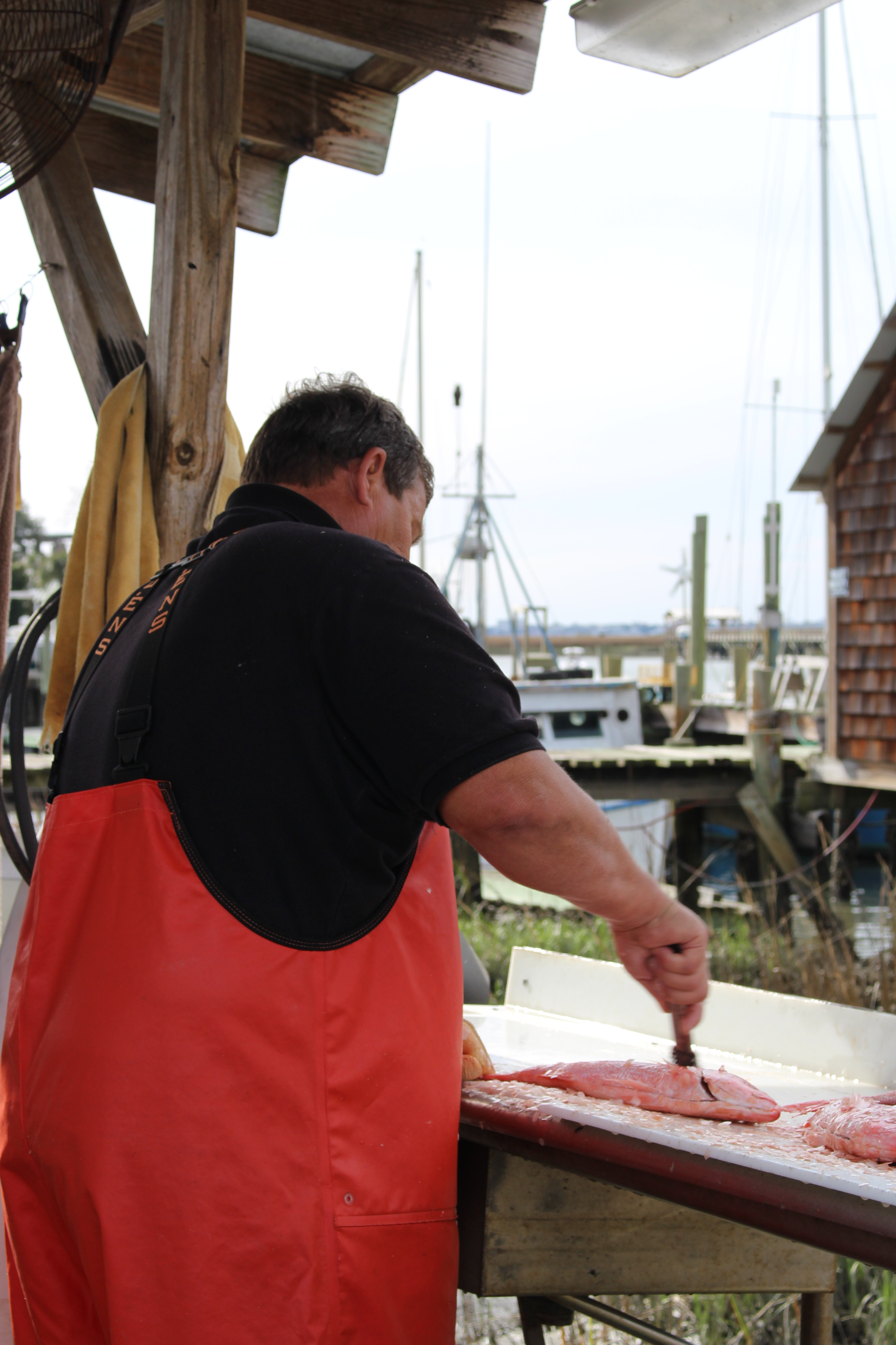 picking up red snapper at docks