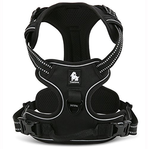 Chai's Choice Harness for dogs