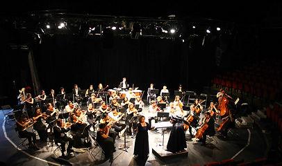 2015-2016 - Piccolo orchestra - La nature - Orchestre symphonique Achères - Le Sax - Yvelines - Ile-de-france