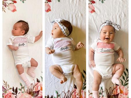 Louella - 3 month update!