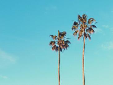 ヒーリングハワイの世界~暑い日本の夏を音楽を聴きながら涼を感じる…