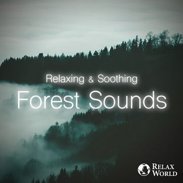 Relaxing & Soothing-Forest Sounds