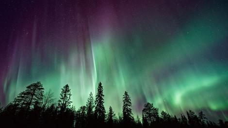 大自然の生命力あふれる北欧の旅へ・・・医学博士推奨作品をご紹介♪