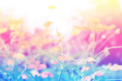 002_home_banner