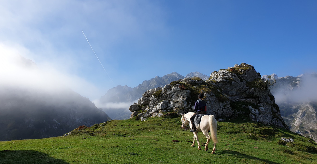 your dream horse riding holidays