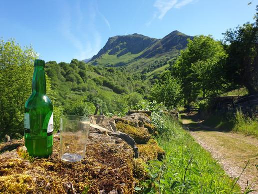Cider trail