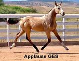 Applause GES.jpg