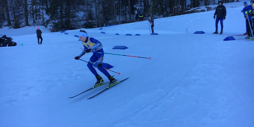 Skiercross de la combe Simon